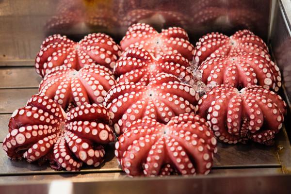 Octopus at Tsukiji
