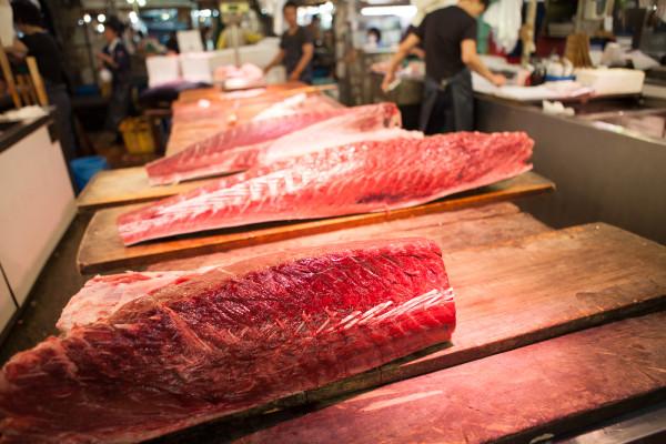 More beautiful tuna