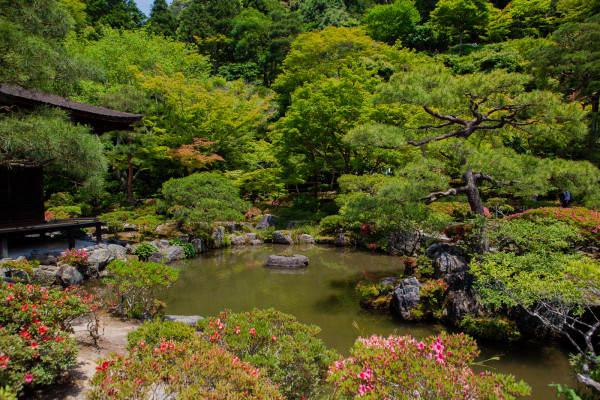 Gardens of Ginkaku-ji (it's a miracle that Andrew was able to get a picture without any school children)